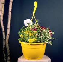 Feu de signalisation fleur 25cm blanc