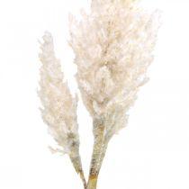 Herbe de la pampa blanc crème décoration herbe sèche artificielle 82cm