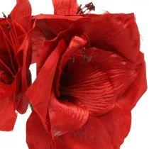 Fleur de soie artificielle rouge Amaryllis avec trois fleurs H40cm