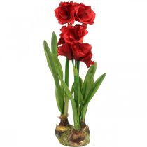 Amaryllis artificielle rouge 3 fleurs en soie sur boules de mousse H64cm