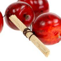 Guirlande de pommes rouge L 110cm