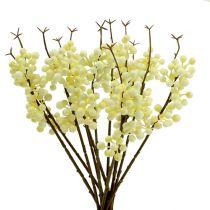 Branche de baies couleur crème L. 30 cm 12 p.