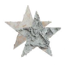 Étoile de bouleau Décoration à contrôler blanchi Ø4cm 80pcs