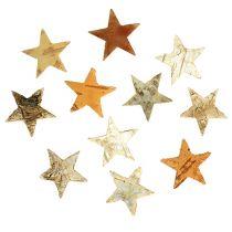 Bouleau étoiles Mini 300p