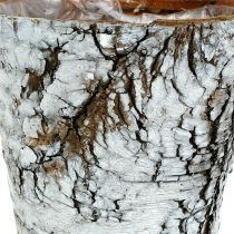 Petit pot en bouleau blanc Ø10cm H8.5cm