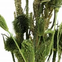 Bouquet de fleurs sauvages naturel, vert 25–60cm 70g