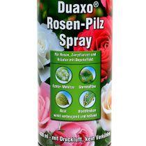 COMPO Duaxo ® Spray Champignon Rose 400 ml
