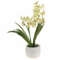 Orchidée artificielle Cymbidium en pot Vert H46cm