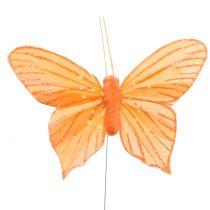 Papillon décoratif orange 12 p.