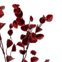 Branche décorative rouge foncée 74 cm 6 p.