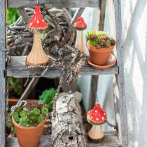 Tabourets décoratifs en bois rouge, naturel 13,5cm - 19cm 3pcs