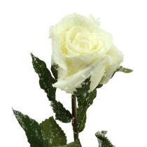 Rose décorative recouverte de neige blanc Ø 6 cm 6 ex.