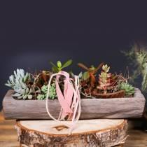 Bol décoratif en bois de paulownia 49cm x 14cm H7cm