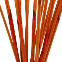 Bâtons décoratifs Elephant Reed Orange 20pcs