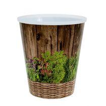 Pot Motif herbes Ø12cm H13,5cm, 1pce