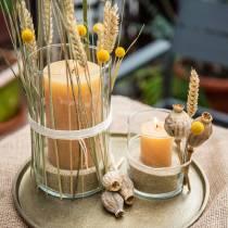 Bougies colorées Couleurs de miel Différentes tailles