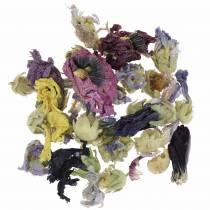 Set artisanat de décoration sèche Echter Eibisch Natur 300g pot-pourri de fleurs