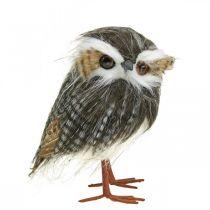 Chouette à décorer, automne, oiseau décoratif, décoration forêt H21cm