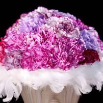 Couronne de plumes Vieux rose Ø22cm
