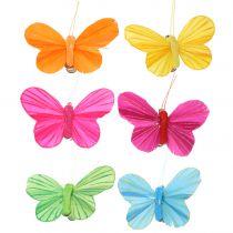 Plume papillon sur clip coloré 6cm 12pcs