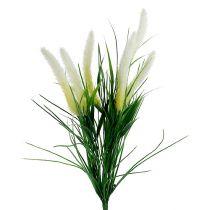 Vulpin vert et blanc 63 cm