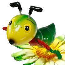 Grille de jardin sur la fleur colorée 11cm