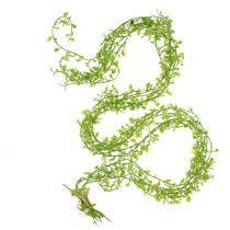 Guirlande de plantes aux baies vertes L122cm
