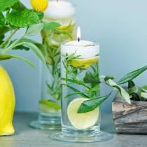 Vase en verre avec base transparente Ø6cm H20cm