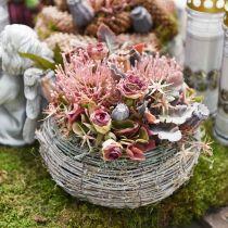 Fleur d'automne en pelote artificielle Protea Rosa Leucospermum 73cm 3pcs