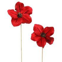 Fleuraison rouge en bois sur tige Ø9cm - 12cm L45cm 15P