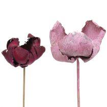 Fleur en bois, mélange de tasse de palmier rose-bruyère 25pcs