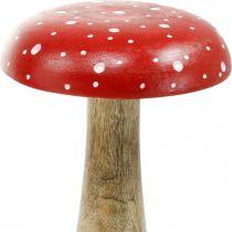 Amanite mouche en bois d'agaric grand champignon décoration d'automne Ø14cm H24cm