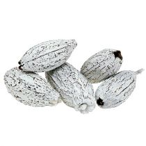 Fruits de cacaoyer blanchis 15 p.