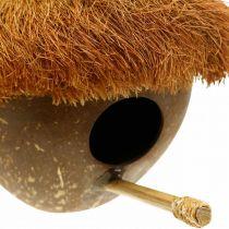 Noix de coco comme nichoir, nichoir à suspendre, décoration coco Ø16cm L46cm