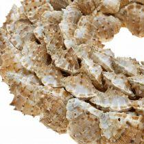 Guirlande décorative escargots Porte décorative maritime Guirlande escargots de mer Ø25cm
