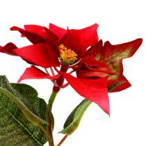 Fleurs artificielles poinsettia rouge L73cm