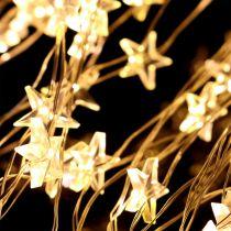 Grappe lumineuse étoiles pour l'extérieur, 320 amp. 1 m argent/blanc chaud