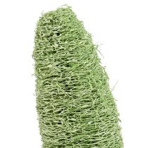 Luffa grand sur un bâton vert 25pcs