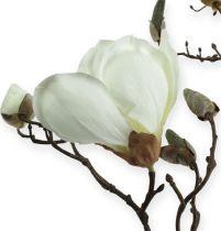 Branche de magnolia blanc 110 cm