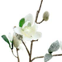 Branche de Magnolia blanche L 82cm avec neige