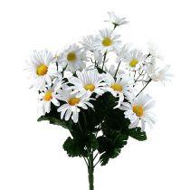 Bouquet de marguerites blanches 45cm