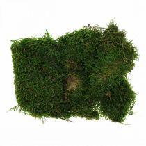 Mousse décorative pour l'artisanat vert, vert foncé 100g