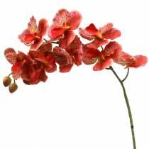 Orchidée artificielle Phaelaenopsis Rouge, Orange H81cm