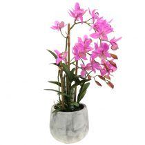 Orchidée en Pot Violet H55cm