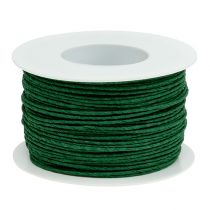 Fil de papier enroulé autour Ø2mm 100m vert