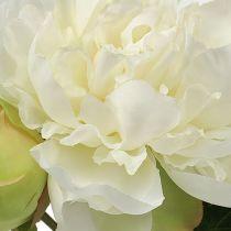 Rose de Pentecôte blanche avec bourgeon L. 30 cm 2 p.