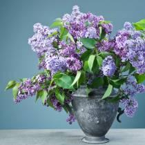 Pot de fleurs Vintage Ø20cm H35cm