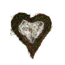 Coeur végétal de vigne, mousse 22cm x 25cm H7cm