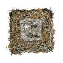 Coussin à plantes en sarments de vigne et mousse végétale 20 x 20 cm