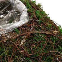 Coussin pour plantes sarments, mousse 22 x 22 cm H. 7,5 cm